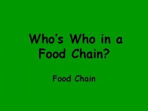 Whos Who in a Food Chain Food Chain