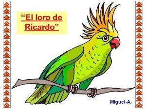 El loro de Ricardo MiguelA A Ricardo le