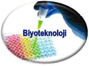 Biyoteknoloji nedir Biyoteknoloji uygulama alanlar nelerdir Biyoteknoloji olumlu
