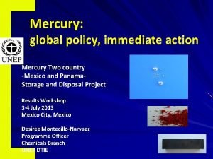 Mercury global policy immediate action Mercury Two country