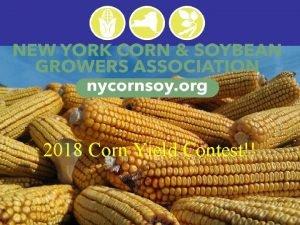 2013 Corn Yield Contest 2018 Corn Yield Contest