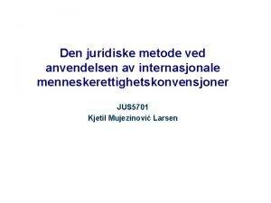 Den juridiske metode ved anvendelsen av internasjonale menneskerettighetskonvensjoner