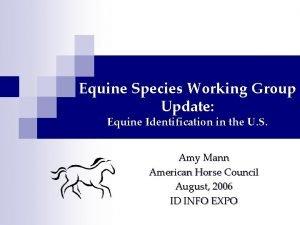 Equine Species Working Group Update Equine Identification in