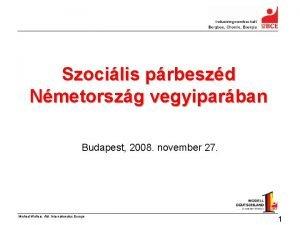 Szocilis prbeszd Nmetorszg vegyiparban Budapest 2008 november 27