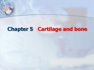 Chapter 5 Cartilage and bone One Cartilage Structure