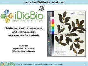 Herbarium Digitization Workshop Digitization Tasks Components and Underpinnings