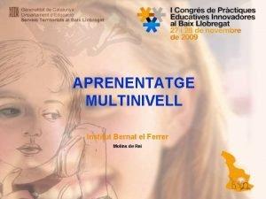 APRENENTATGE MULTINIVELL Institut Bernat el Ferrer Molins de