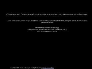 Discovery and Characterization of Human Amniochorionic Membrane Microfractures