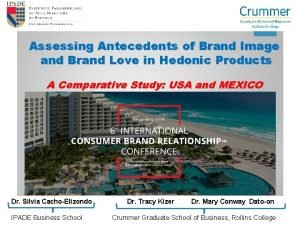 Assessing Antecedents of Brand Image and Brand Love