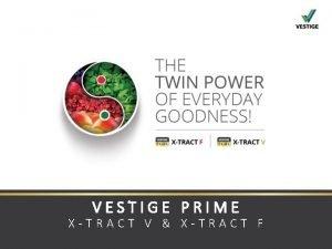 VESTIGE PRIME XTRACT V XTRACT F FRUITS VEGETABLES