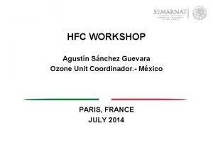 HFC WORKSHOP Agustn Snchez Guevara Ozone Unit Coordinador