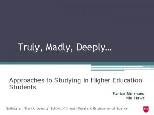 Truly Madly Deeply Approaches to Studying in Higher