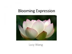 Blooming Expression Lucy Wang Goal of the Project
