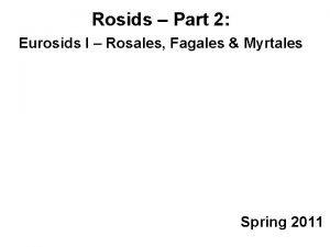 Rosids Part 2 Eurosids I Rosales Fagales Myrtales