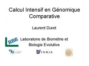 Calcul Intensif en Gnomique Comparative Laurent Duret Laboratoire