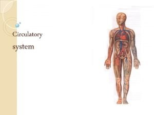 Circulatory system Circulatory system Plan of the lesson