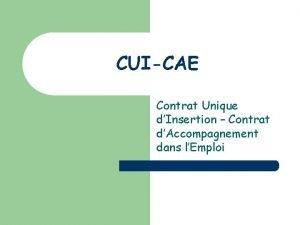 CUICAE Contrat Unique dInsertion Contrat dAccompagnement dans lEmploi