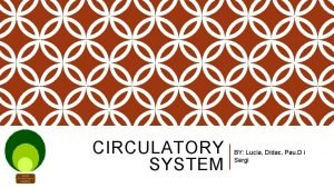 CIRCULATORY SYSTEM BY Luca Ddac Pau D i