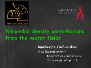 Primordial density perturbations from the vector fields Mindaugas
