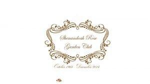 Shenandoah Valley Garden ClubDivision I Great Beginnings Faye