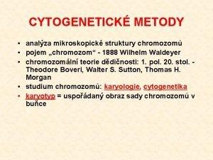 CYTOGENETICK METODY analza mikroskopick struktury chromozom pojem chromozom