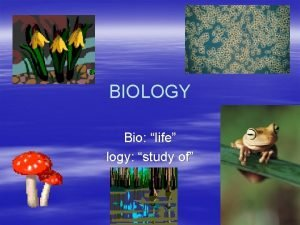 BIOLOGY Bio life logy study of What does