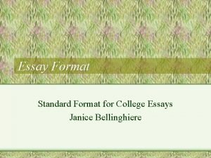 Essay Format Standard Format for College Essays Janice