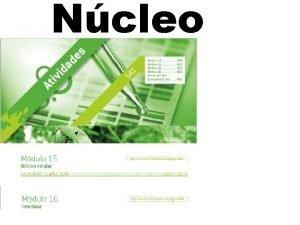 Ncleo Ncleo estrutura presente nas clulas eucariontes delimitado