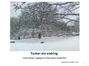 Tanker om endring Petter Nsje Fagdager for helsesstre
