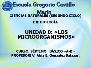 Escuela Gregorio Castillo Marn CIENCIAS NATURALES SEGUNDO CICLO
