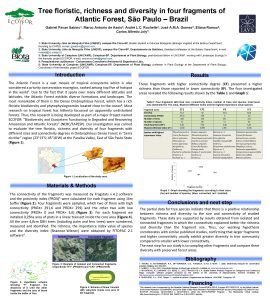 Tree floristic richness and diversity in four fragments