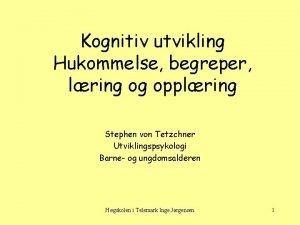 Kognitiv utvikling Hukommelse begreper lring og opplring Stephen