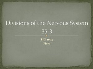 Divisions of the Nervous System 35 3 BIO