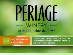 le Bio Bollicine dal 1985 Organic Wines since