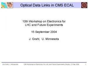 ECAL Optical Data Links in CMS ECAL 10
