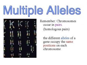 Remember Chromosomes occur in pairs homologous pairs the