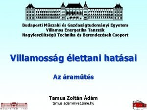 Budapesti Mszaki s Gazdasgtudomnyi Egyetem Villamos Energetika Tanszk