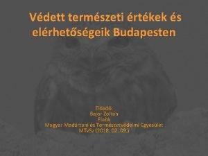 Vdett termszeti rtkek s elrhetsgeik Budapesten Elad Bajor