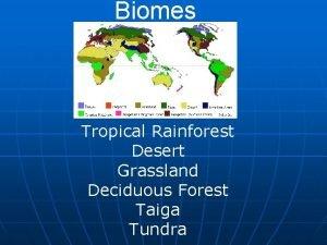Biomes Terrestrial Only Tropical Rainforest Desert Grassland Deciduous