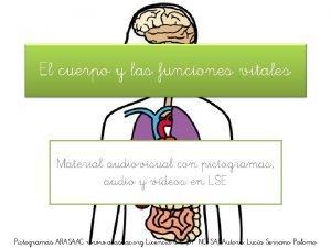 El cuerpo y las funciones vitales Material audiovisual