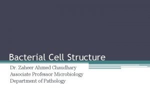 Bacterial Cell Structure Dr Zaheer Ahmed Chaudhary Associate