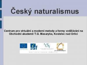 esk naturalismus Centrum pro virtuln a modern metody
