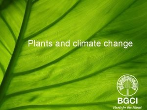 Plants and climate change What is climate change