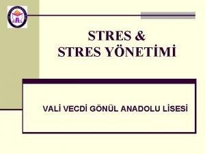 STRES STRES YNETM VAL VECD GNL ANADOLU LSES