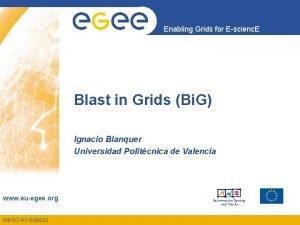 Enabling Grids for Escienc E Blast in Grids