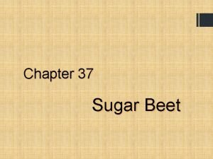 Chapter 37 Sugar Beet Sugar Beet Learning Outcomes