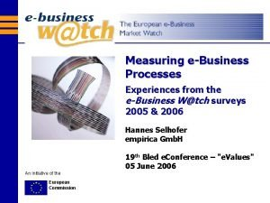 Measuring eBusiness Processes Experiences from the eBusiness Wtch