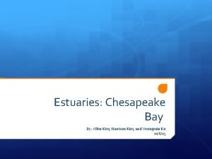Estuaries Chesapeake Bay By Allen Kim Harrison Kim
