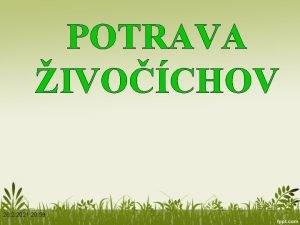 POTRAVA IVOCHOV 26 2 2021 20 59 MOTIVCIA