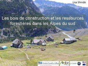 Lisa Shindo Les bois de construction et les